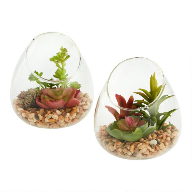 Faux Succulents In Glass Terrariums Set Of 2