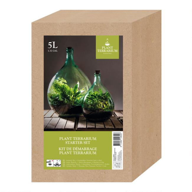 Glass Closed Terrarium Starter Set with Tools 5L