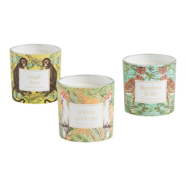 Jungle Label Filled Jar Candle Collection