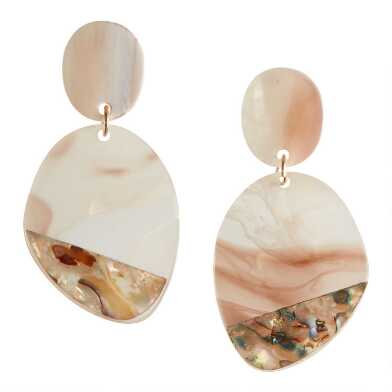 Brown and Clear Acrylic And Abalone Shell Dangle Earrings