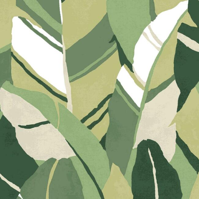 Green Hearts of Palm Peel and Stick Wallpaper