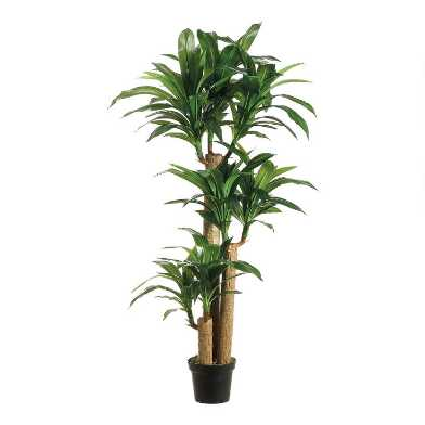 5 Foot Faux Dracaena Tree