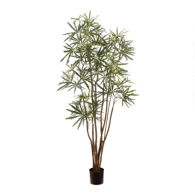 Faux Aralia Tree