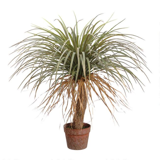 Faux Desert Palm Tree