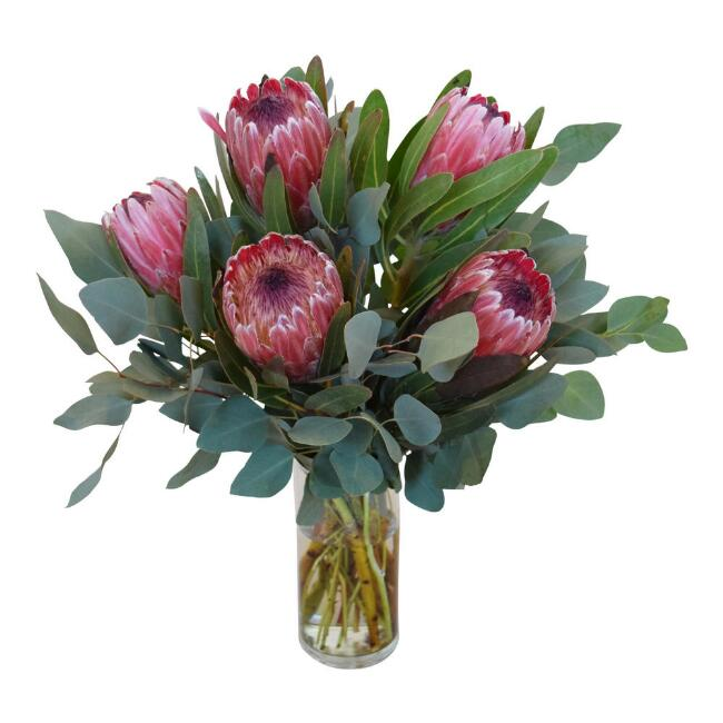 Fresh Pink Ice Protea and Eucalyptus Bouquet