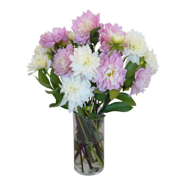 Fresh Pink and White Dahlia Bouquet