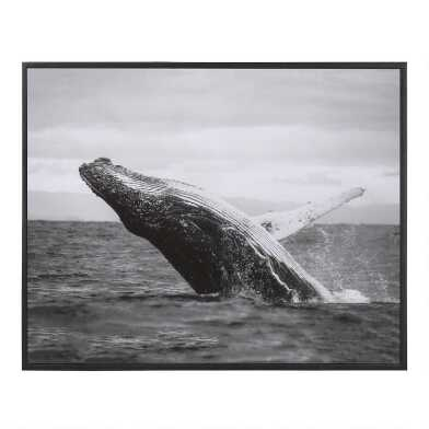 Jumping Whale Black And White Framed Canvas Wall Art