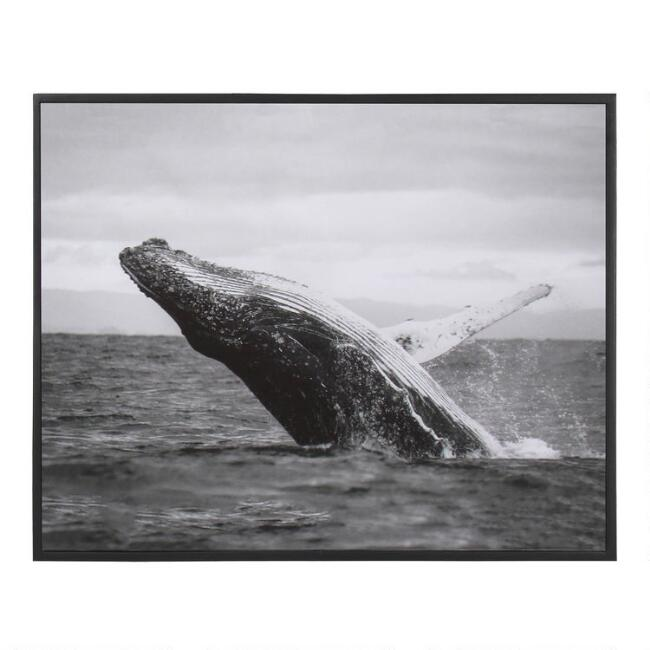 Black And White Jumping Whale Framed Canvas Wall Art