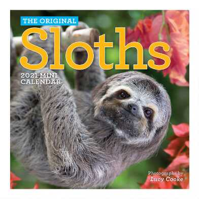Mini Sloths 2021 Wall Calendar