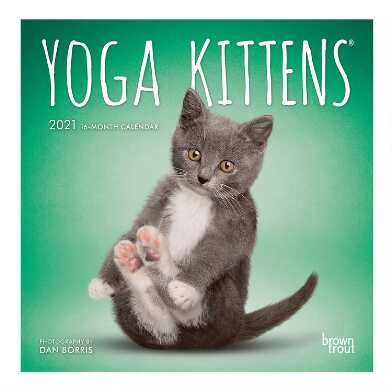 Mini Yoga Kittens 2021 Wall Calendar