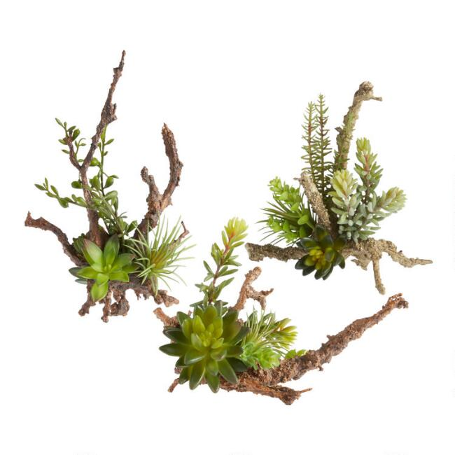 Faux Succulents on Twigs Set of 3
