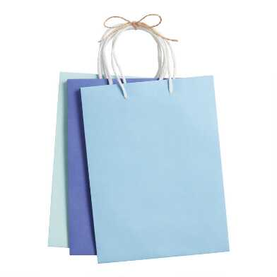 3 Pack Medium Blue Kraft Paper Gift Bags Set of 2
