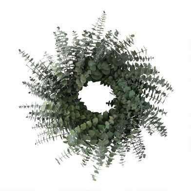Preserved Baby Eucalyptus Wreath