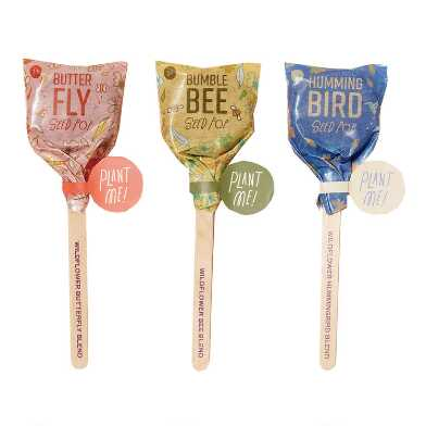 Modern Sprout Pollinator Seed Lollipops Set of 3