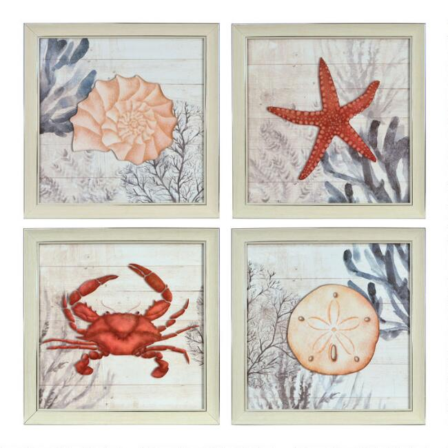 Sealife By Ava Barrett Framed Wall Art 4 Piece