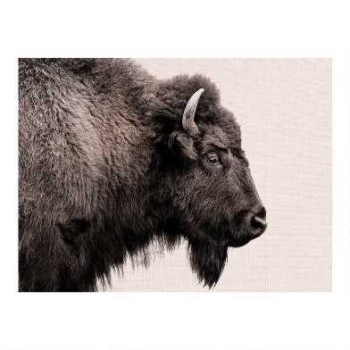 Buffalo Profile Canvas Wall Art