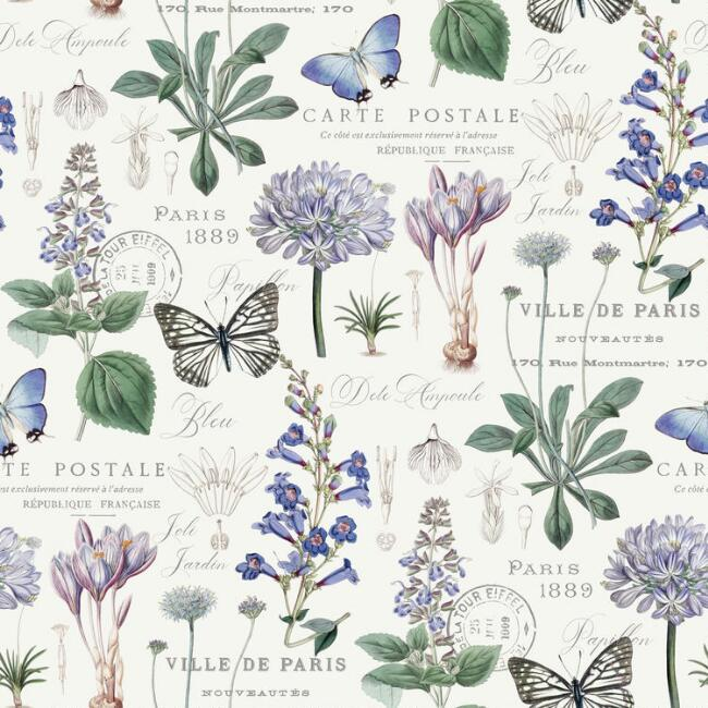 Butterfly Botanical Peel And Stick Wallpaper