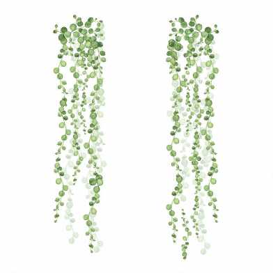 String Of Pearls Plant Peel And Stick Wall Decals 2 Piece