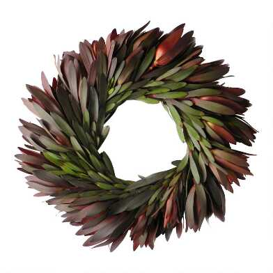 Fresh Safari Sunset Leucadendron Wreath