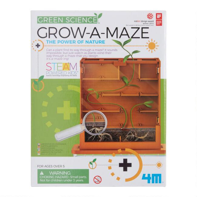 4M Green Science Grow a Maze Science Kit