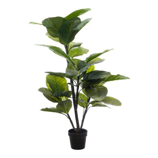 Faux Large Leaf Rubber Plant