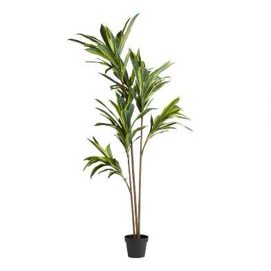 Faux Variegated Dracaena Tree