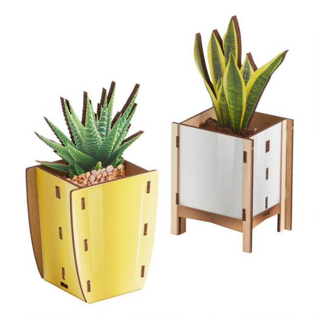 Fred Pop Plant Pencil Holders Set of 2