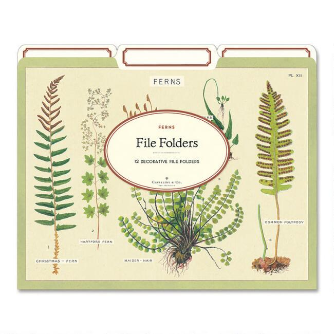 Illustrated Fern File Folders 12 Pack
